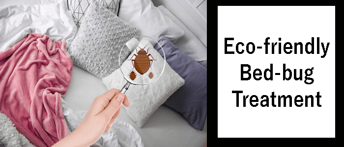 Eco-Friendly Bed Bug Treatment